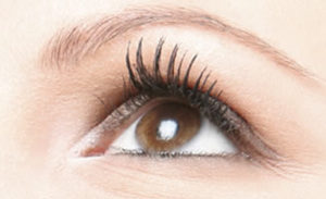 lash lift, lvl lashes, lash perming, eyelash, Newcastle beauty salon Gosforth Killingworth Wallsend Benton